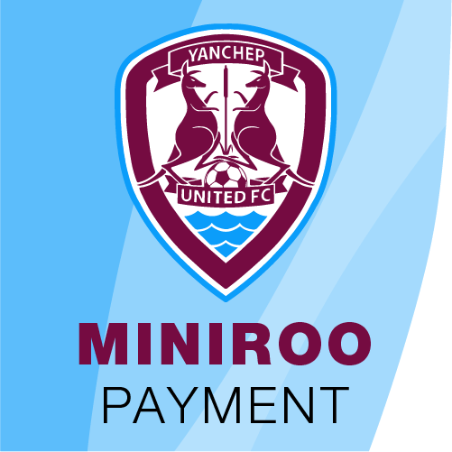 rego-miniroo-pay